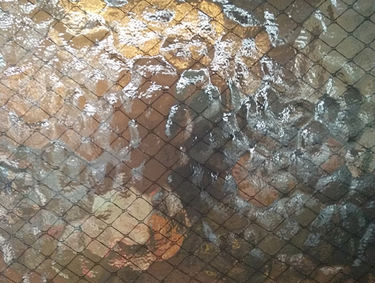 夹丝 夹绢玻璃